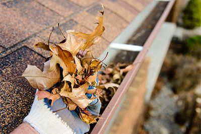 In-home-services-cleaning_gutters